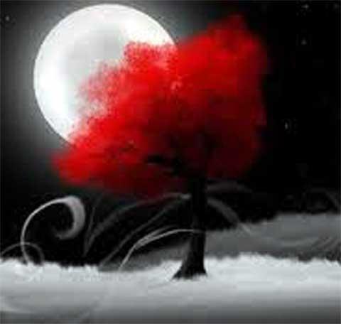 albero rosso con luna bianca