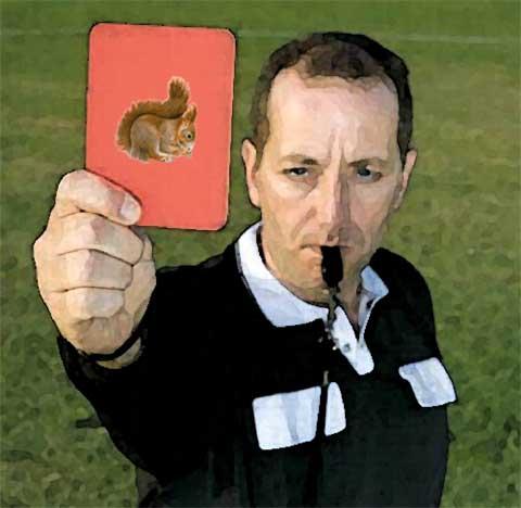 arbitro mostra cartellino rosso