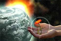 fiore arancione in una mano con sfondo cosmico