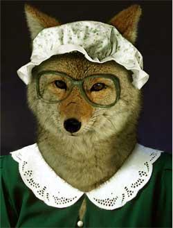 nonna lupo