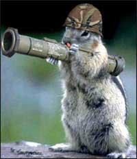 scoiattolo (squirrel) soldato con elmetto e bazooka